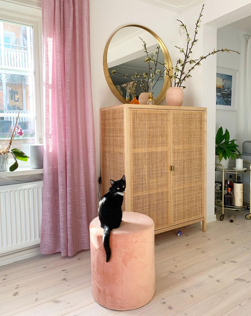 Vardagsrum med katt